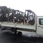 Transport avec Colis PLus (7)
