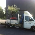 Transport avec Colis PLus (2)